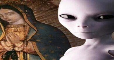 Virgen myuoresearch